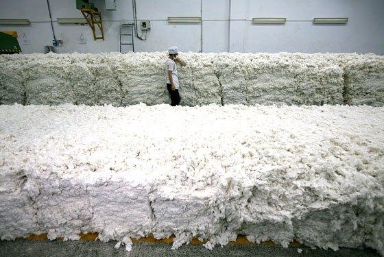 Heddels Definition - Pre-ginned Cotton
