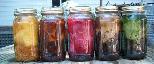 Raw Denim Term - Natural Dyes