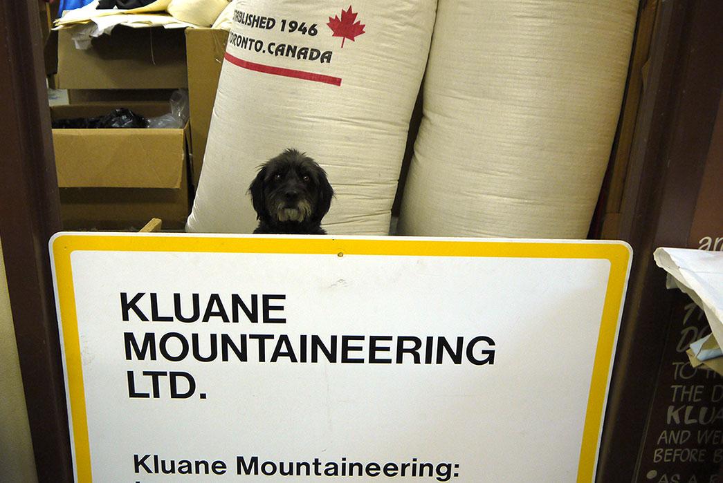 kluane-mountaineering-norah