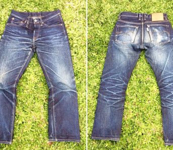 Fade-of-the-Day---Sage-Ironhorn-(1-Year,-3-Washes,-1-Soak)-front-back