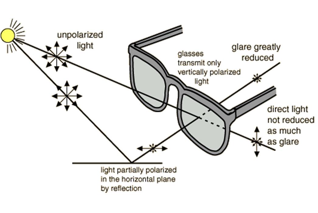 a-primer-on-well-made-sunglasses-eye-science-image-via-uptight-suburbanite