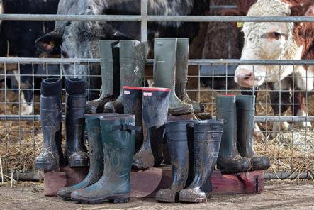 wellington-boots-history-jonathan-page