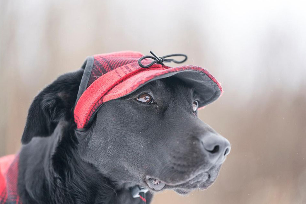 The-History-of-the-Stormy-Kromer-If-you-mutt-get-your-dog-a-hat,-make-it-a-Stormy-Kromer