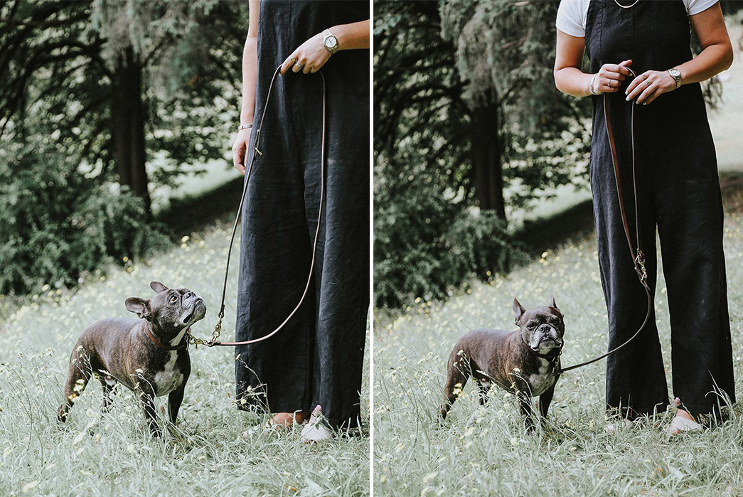 Tanner-Goods-Has-a-New-Lead-For-Your-Patina-Pups-with-dog-2