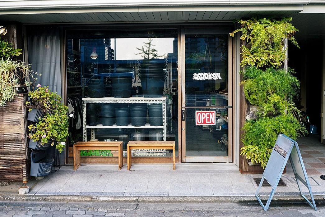 Sassafras-Kyoto---The-Weekly-Rundown
