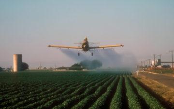How-We-Got-Here-Organic-Cotton---The-Weekly-Rundown