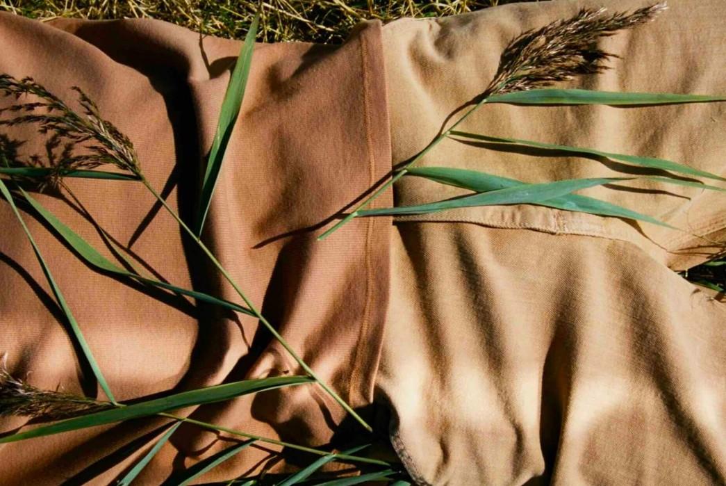 5 Ways to Spot Greenwashing – The Weekly Rundown