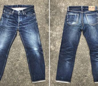 Fade-Friday---Kojima-Genes-RNB1004-(2-Years,-2-Washes,-2-Soaks)-front-back